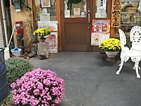 2013_11060002
