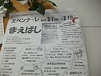 2013_03020004