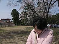 2013_04020003