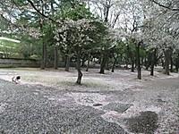 2013_04070004