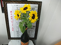 2013_06150002